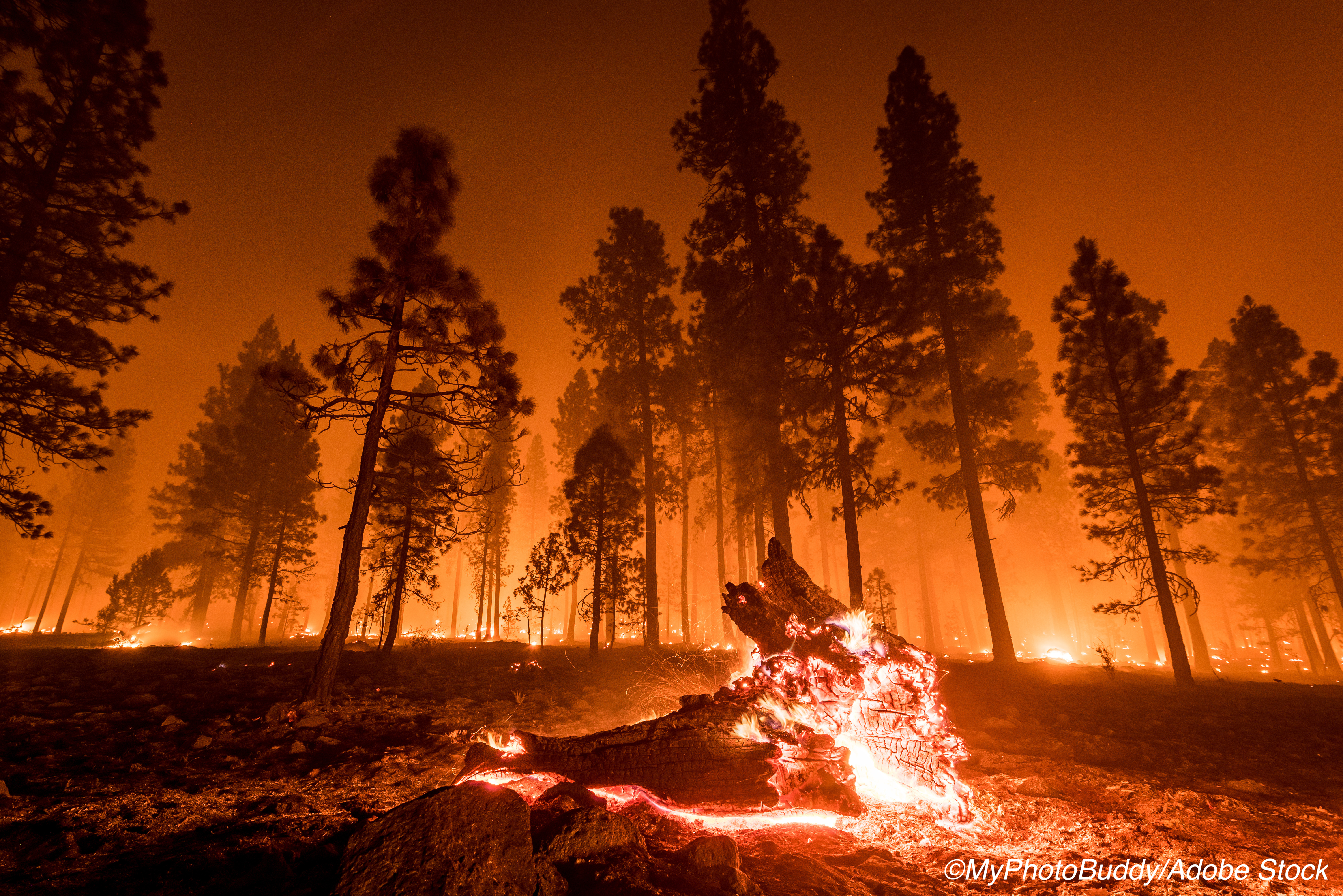 The West Is Burning—Is This a Healthcare Crisis?