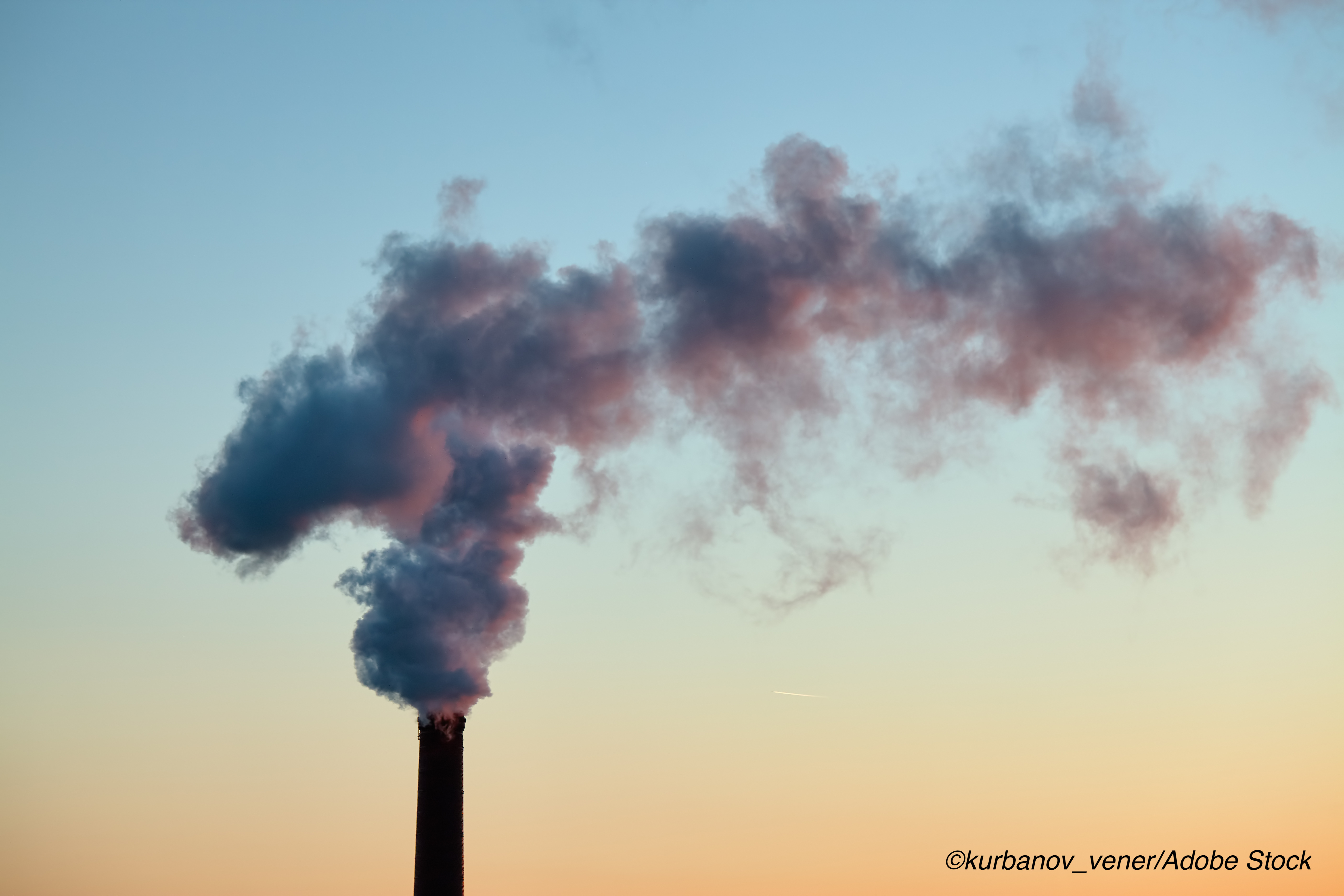 Short-Term Exposure to Higher Air Pollution Linked to Cognitive Function